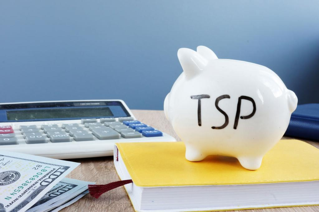 How to allocate your TSP
