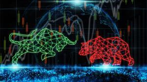 Bull and bear market tsp report investment